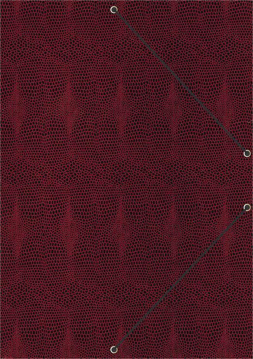 RNK Elegante Konferenz 46205 und Ordnungsmappe Style Sunrise Red für